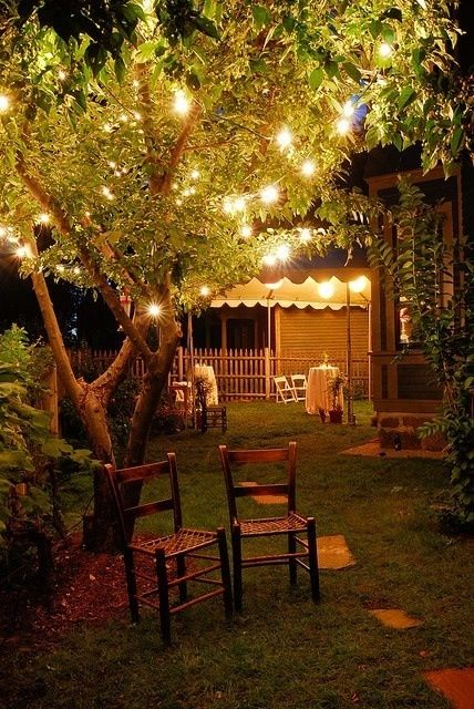 The Back Yard - Lights for decoration at night are totally