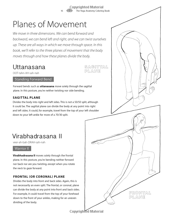 Foot Anatomy And Function Manual Guide