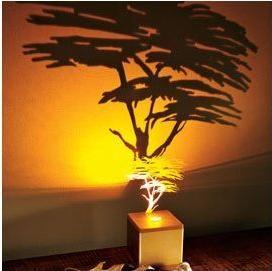 Decorative Wall Lamps shadow wall light   lighting   pinterest   walls and lights