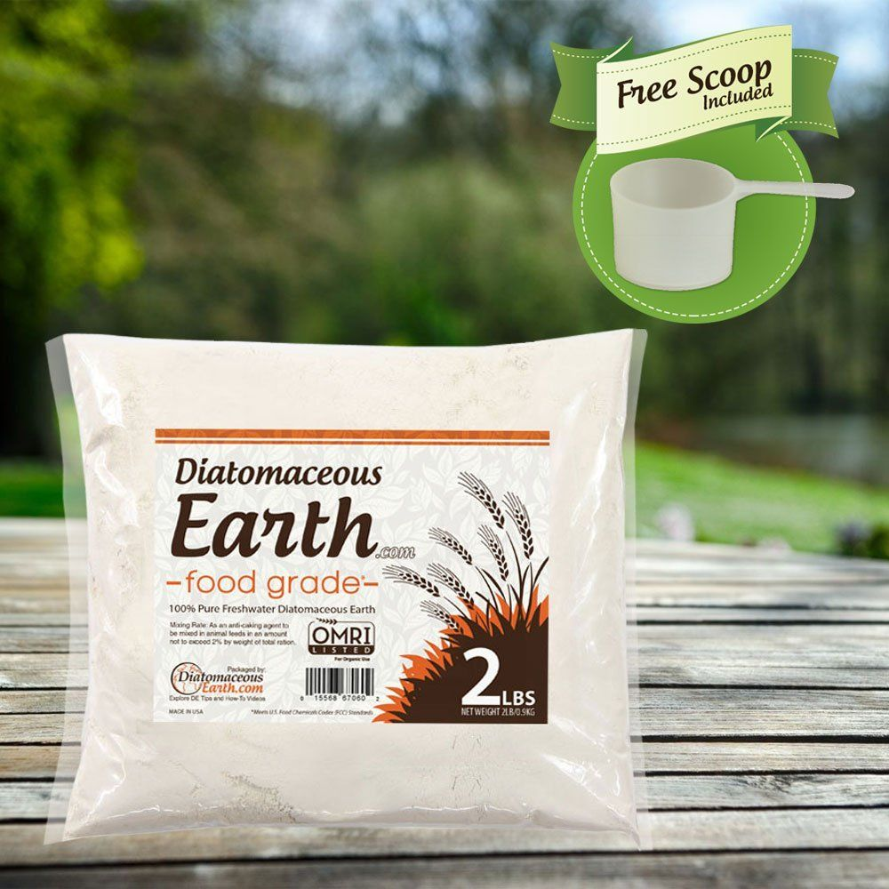 Diatomaceous Earth   Great for non chemical insect control in the garden.