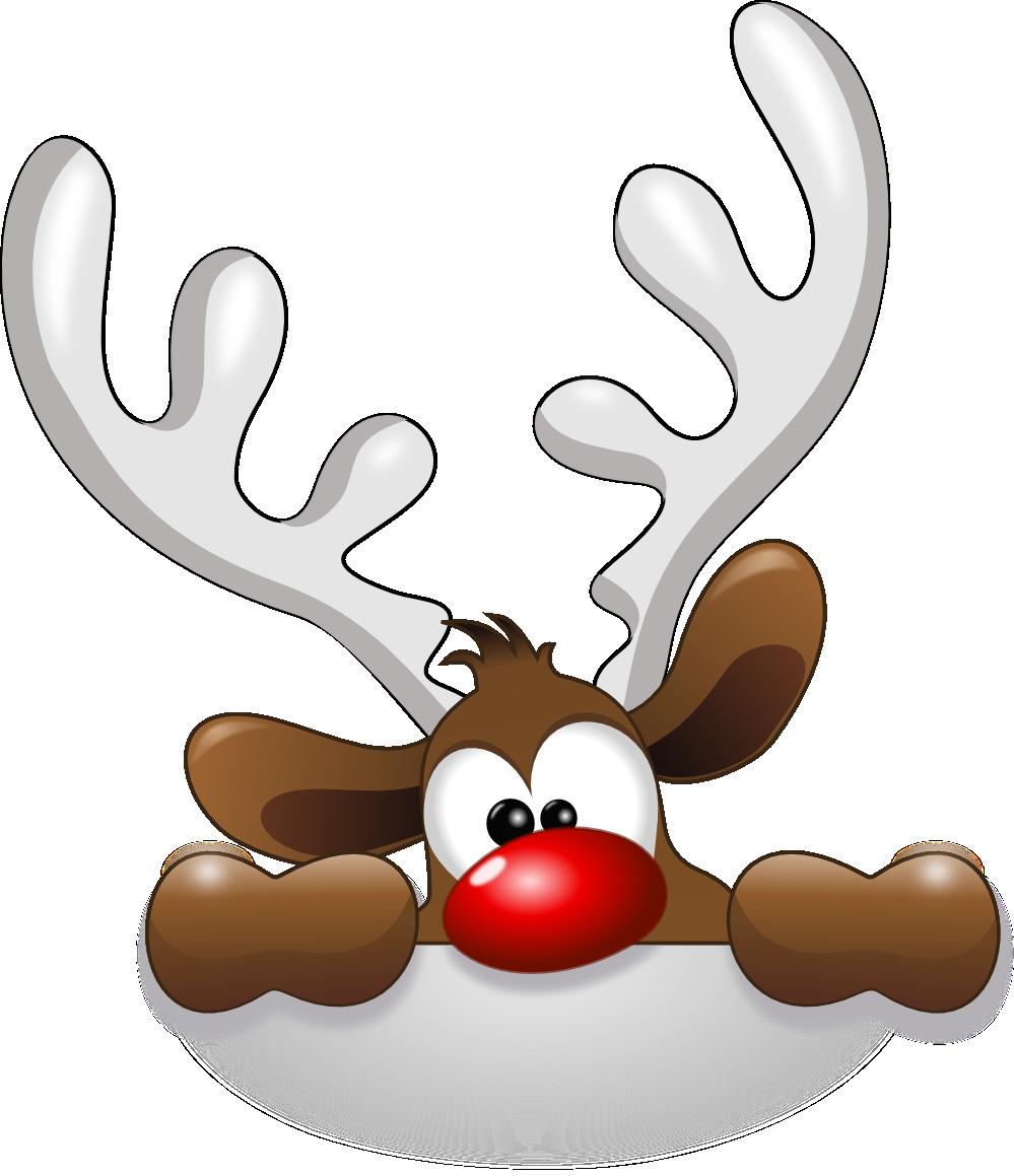 Funny Reindeer Pictures Gallery