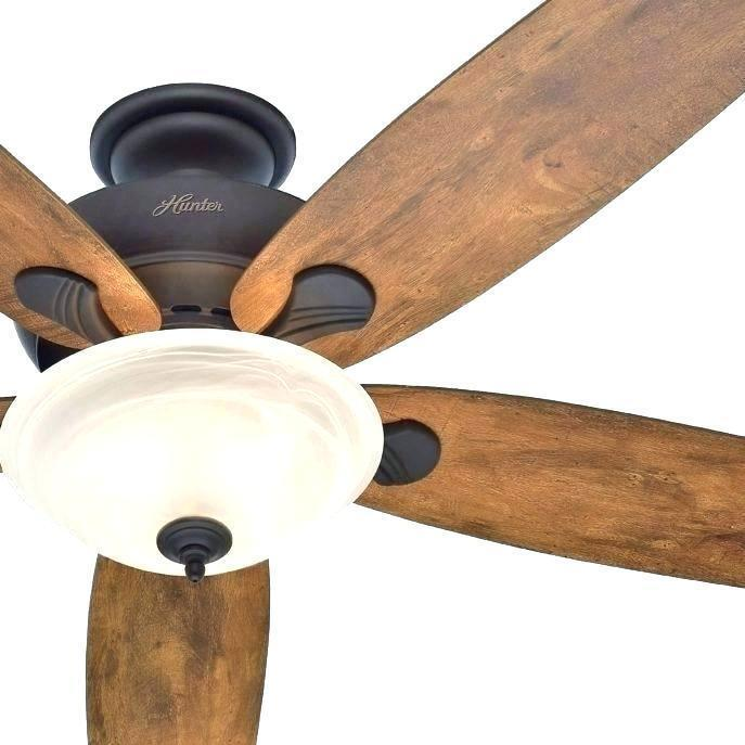 Flush Mount 32 Inch Fans Lowes Google Search Hunter Ceiling