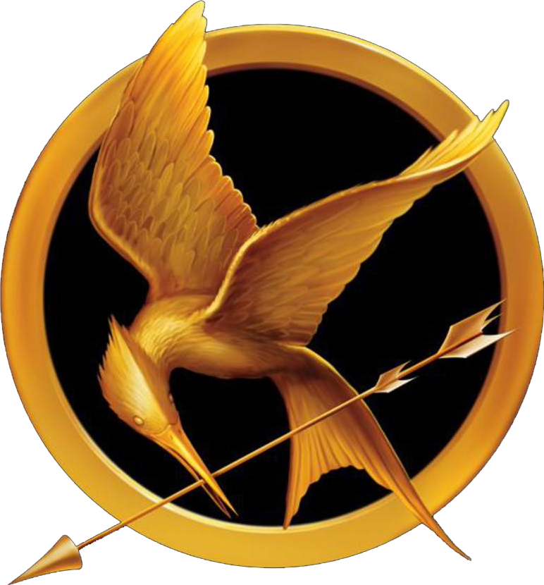 The Hunger Games Book 1 Hunger Games Books Hunger Games Party