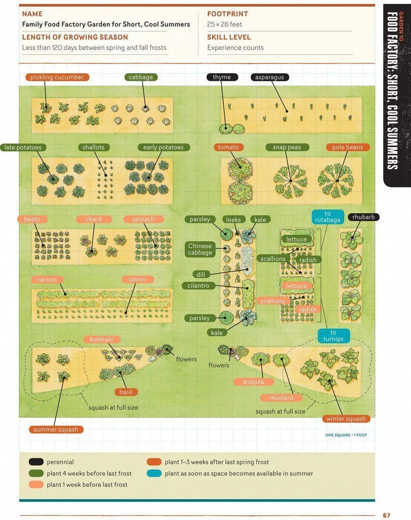 Starter Ve able Gardens Sustainable Seed Co