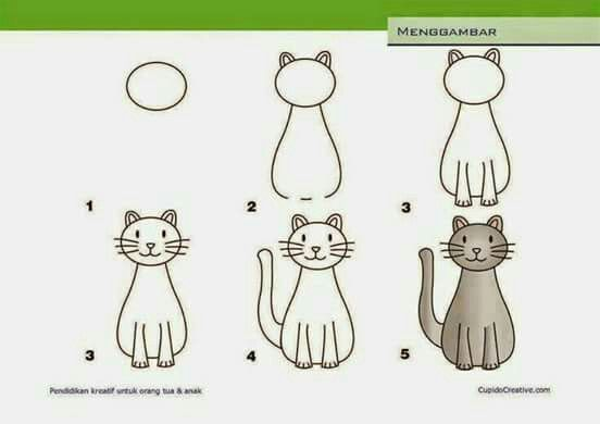 Easy to draw cat