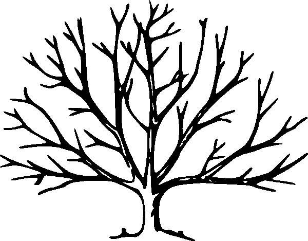 Drawing A Tree Without Leaves Kids Drawing Coloring Page Craft