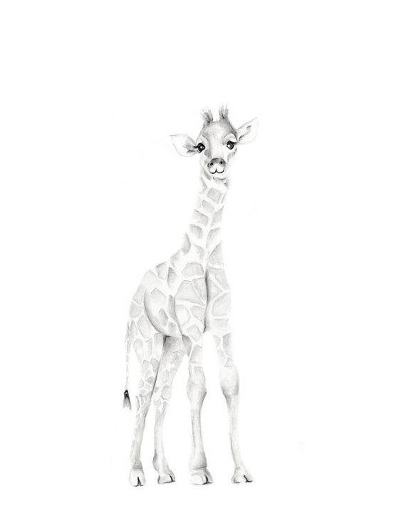 Giraffe Nursery Art, Safari, Jungle Animal Print, Baby ...