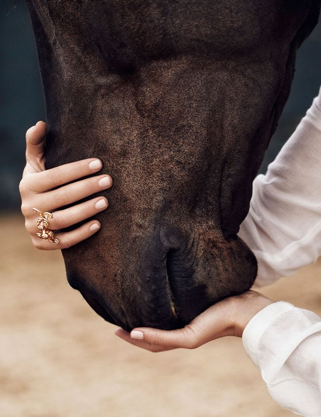 The special bond between a girl, and her horse//