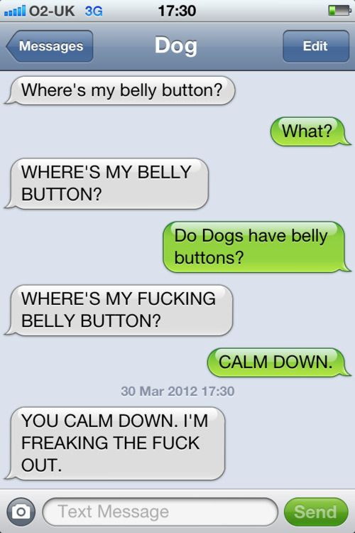 Another Conversation Between A Dog And His Human Bad Language