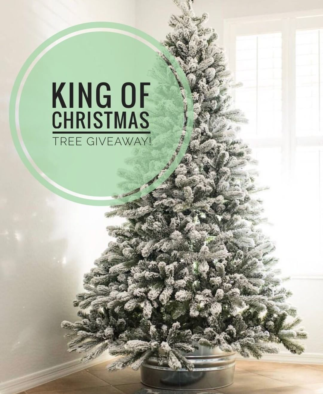 Check out my giveaway @gatheredgrace to win a king of Christmas tree ...