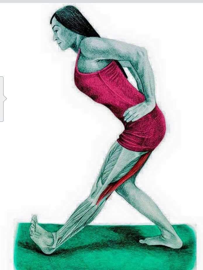 FB_IMG_1451737624392 | fitness | Pinterest | Estiramiento ...
