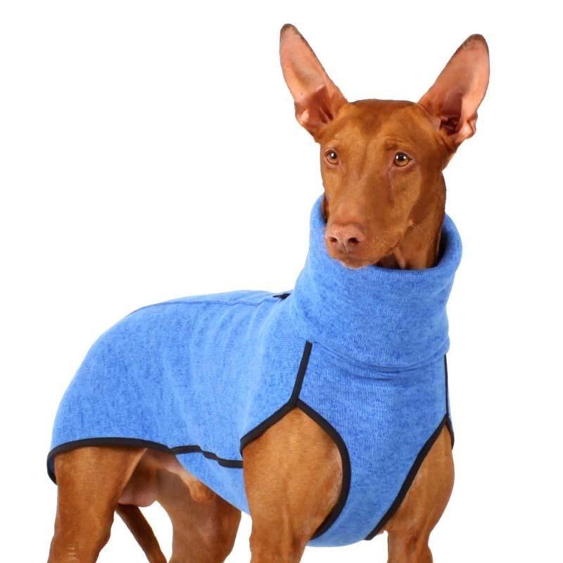Kevin Jumper Xs1 Xs2 32 5 Cm I 2020 Greyhound Hund Rhodesian Ridgeback