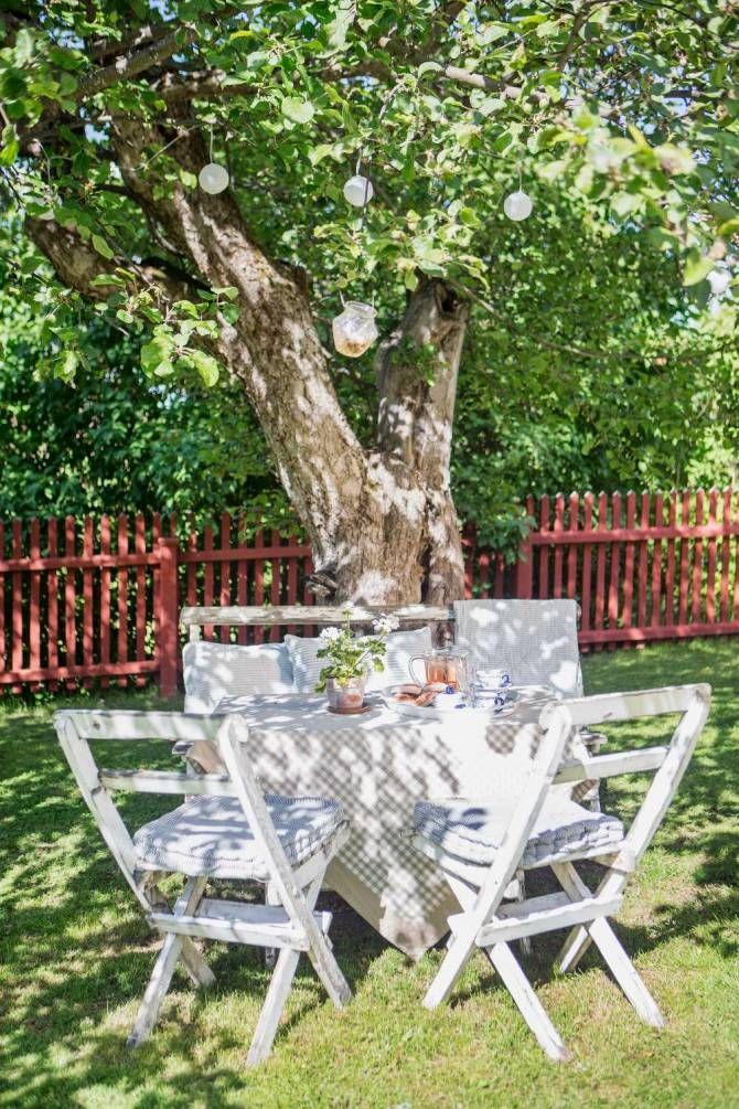 SLITET SEKELSKIFTESHUS BLEV FAMILJENS DRÖMHEM: Under ett fruktträd framför det röda trähuset står bordet uppdukat med saft och bullar   Lantliv