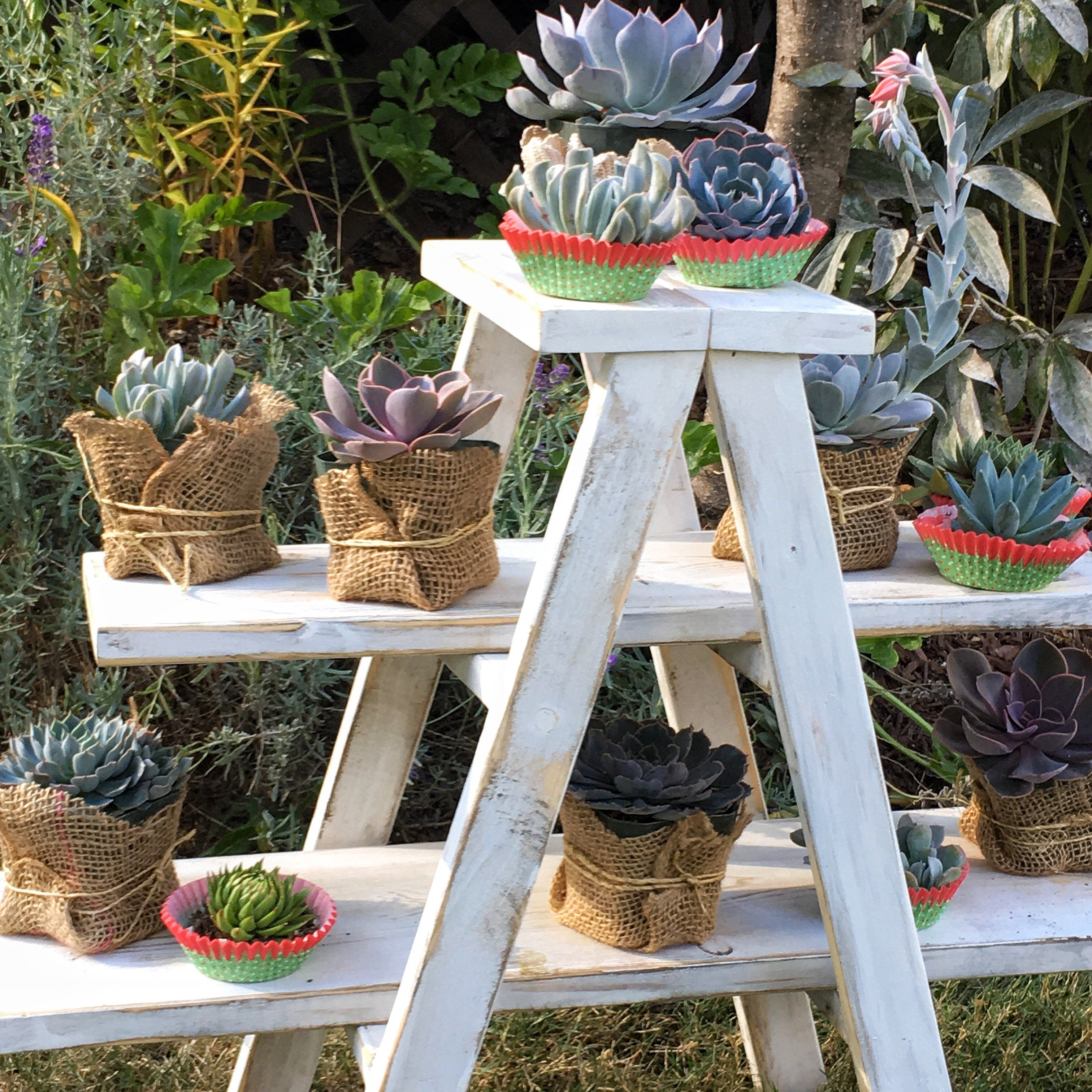 Rustic cupcake stand ladder display rustic cupcakes and products