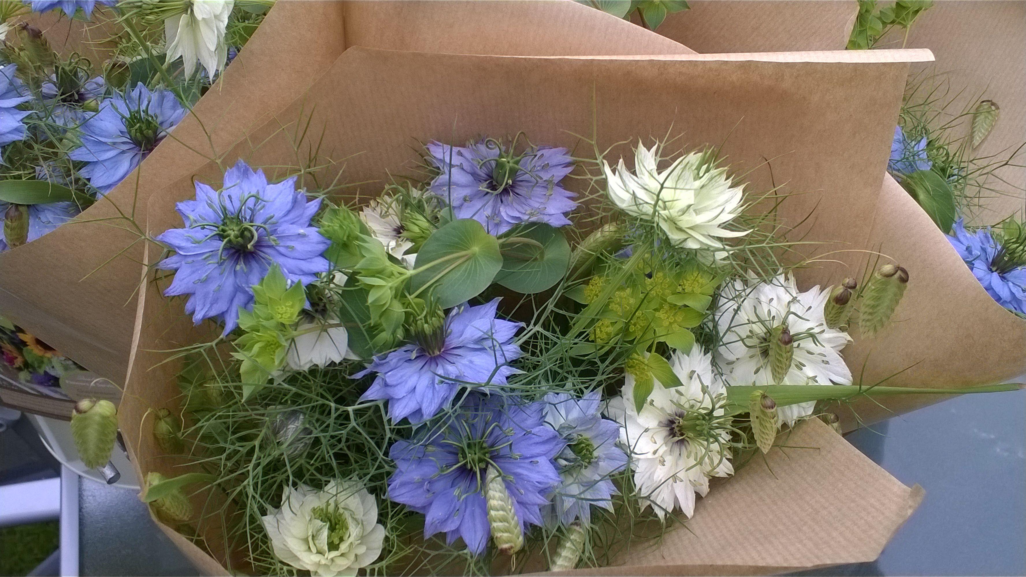 Love In The Mist From The Flower Farm Flower Farm British Flowers Edible Flowers