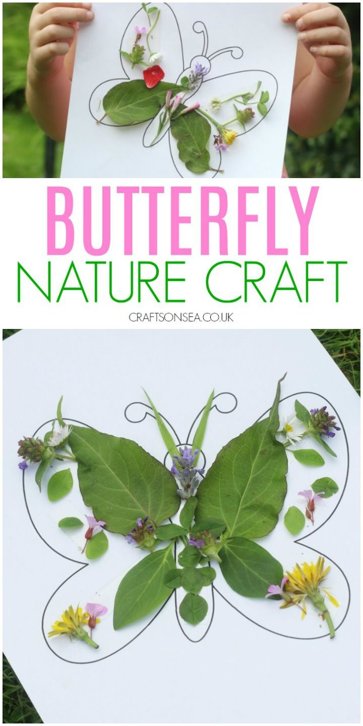 Butterfly Nature Craft