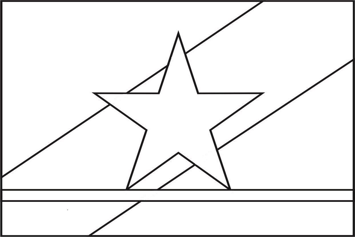 Bandeira Do Estado Brasileiro De Roraima Para Colorir Com Imagens