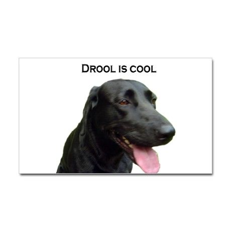 Drool Is Cool Just Love Me Cool Stuff Dogs