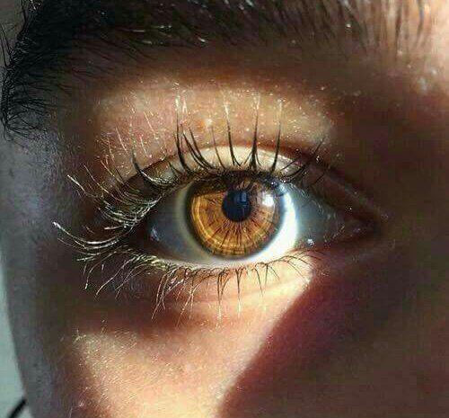 Eye Makeup With Mascara In 2020 Eye Photography Brown Eyes Aesthetic Beautiful Eyes