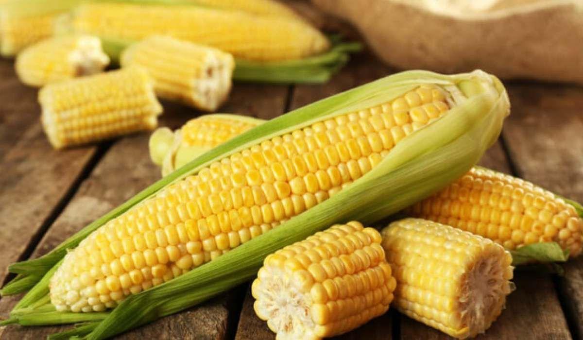 فوائد الذرة المسلوقة للحامل Corn Nutrition Facts Healthy Corn Super Healthy Recipes