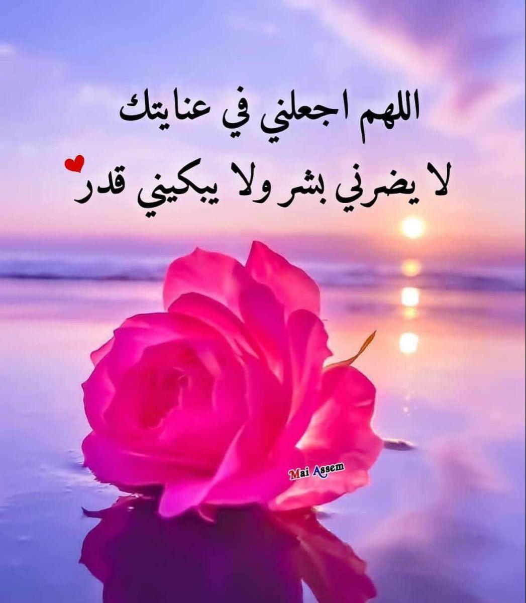 Pin By Joumana On دعاء Duaa Islam Flowers Islam