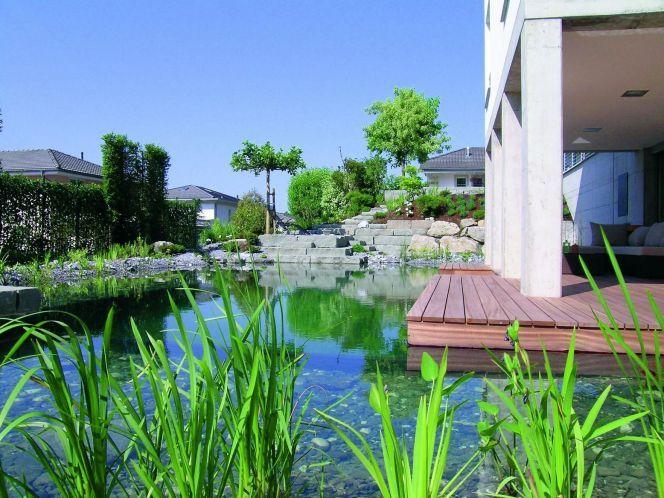 Bassin de baignade naturelle avec terrasse en bois BioTop© BIOTOP - terrasse bois avec bassin