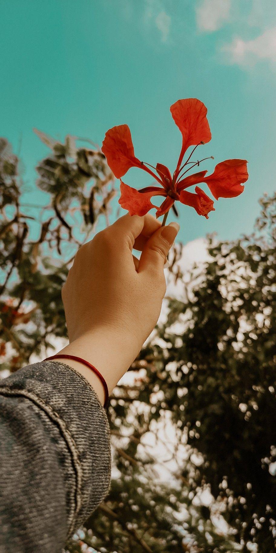 Pin By عراقية كشخة On صور خلفيات Girls With Flowers Cute Photography Photo Ideas Girl