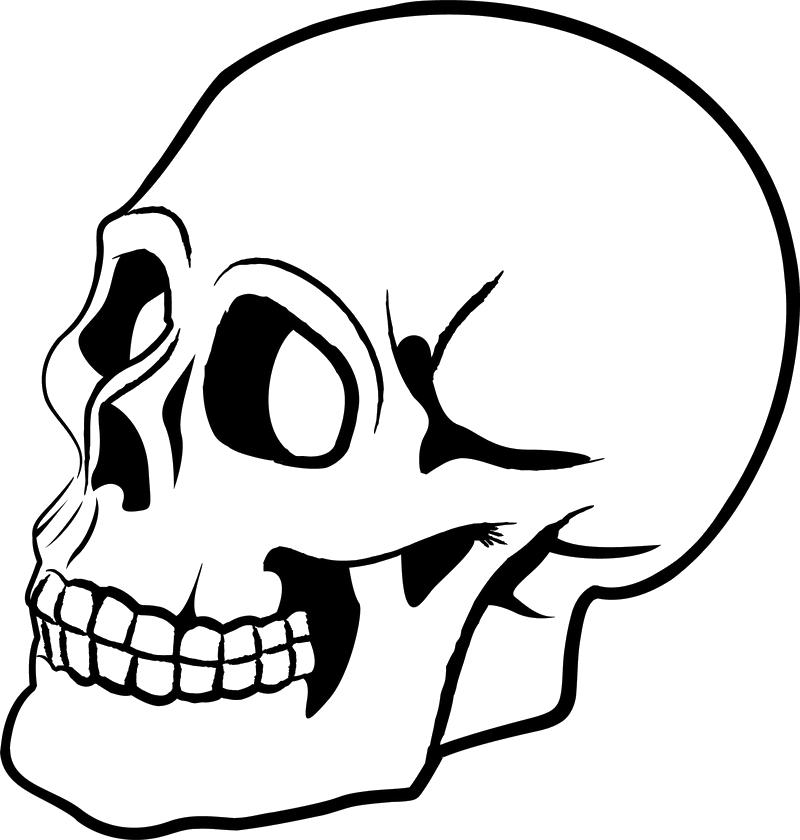 Skulls Png Image Skeleton Drawings Skull Silhouette Skull Stencil