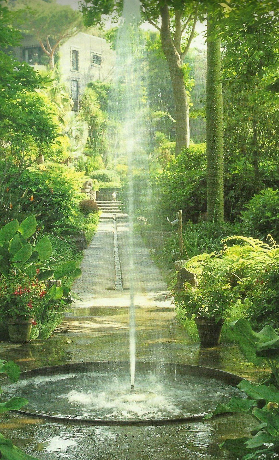 Water fountains masters - Beautiful Water Feature Fountain In A Green Lush Garden