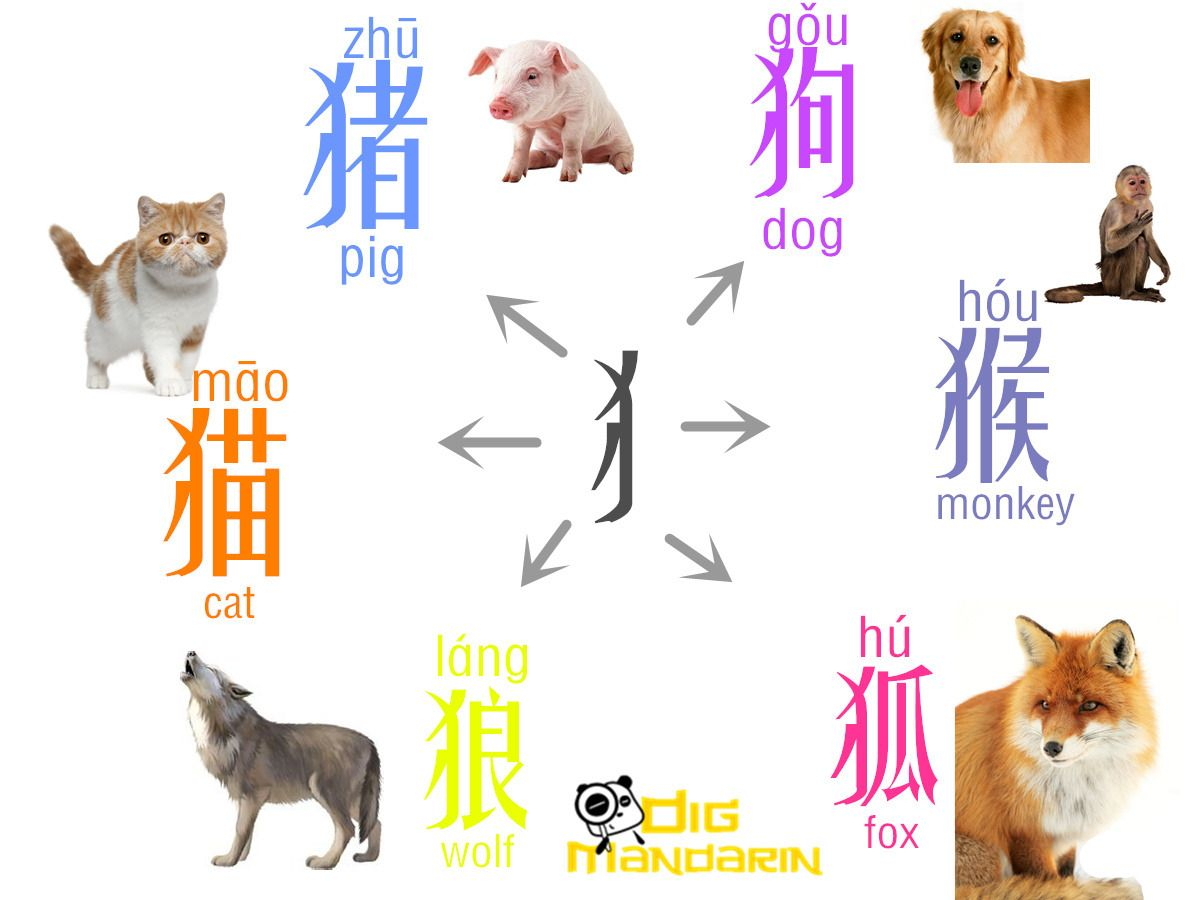 Learn More Chinese Characters With The Radicals This