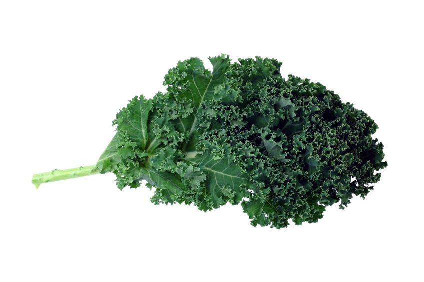 Kale, a nutrient dense, anti aging powerhouse.  Kale is full of antioxidant nutrients, anti-inflammatory nutrients, and anti-cancer nutrients in the form of glucosinolates.  There are all kinds of delicious recipes - search them out and send them to us!!     We love kale!!