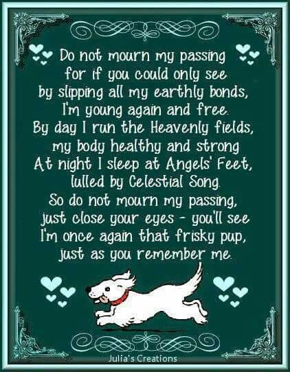 Pup In Heaven Poem Dog Poems Pet Loss Grief Pet Remembrance