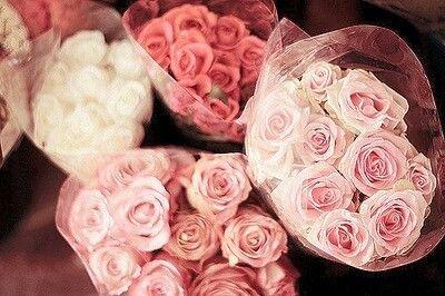 Ramos de rosas.
