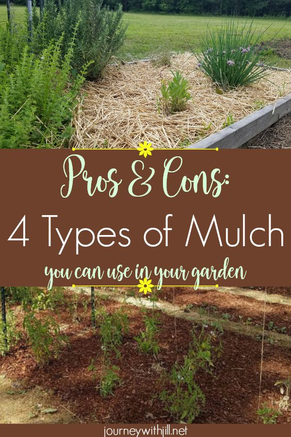 4 Types Of Mulch You Can Use In Your Garden Https Journeywithjill Gardening 2016 05 16