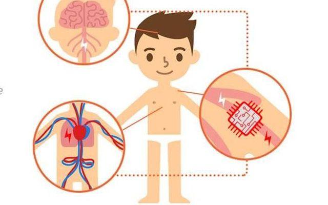 Hình minh họa các thiết bị điện tử cấy ghép trong cơ thể.