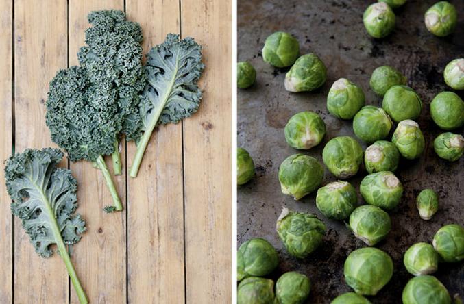 ¡¿Un vegetal nuevo?! Conócelo en: http://www.sal.pr/?p=95378