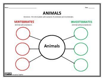 vertebrates and invertebrates graphic organizer educational finds and teaching treasures. Black Bedroom Furniture Sets. Home Design Ideas