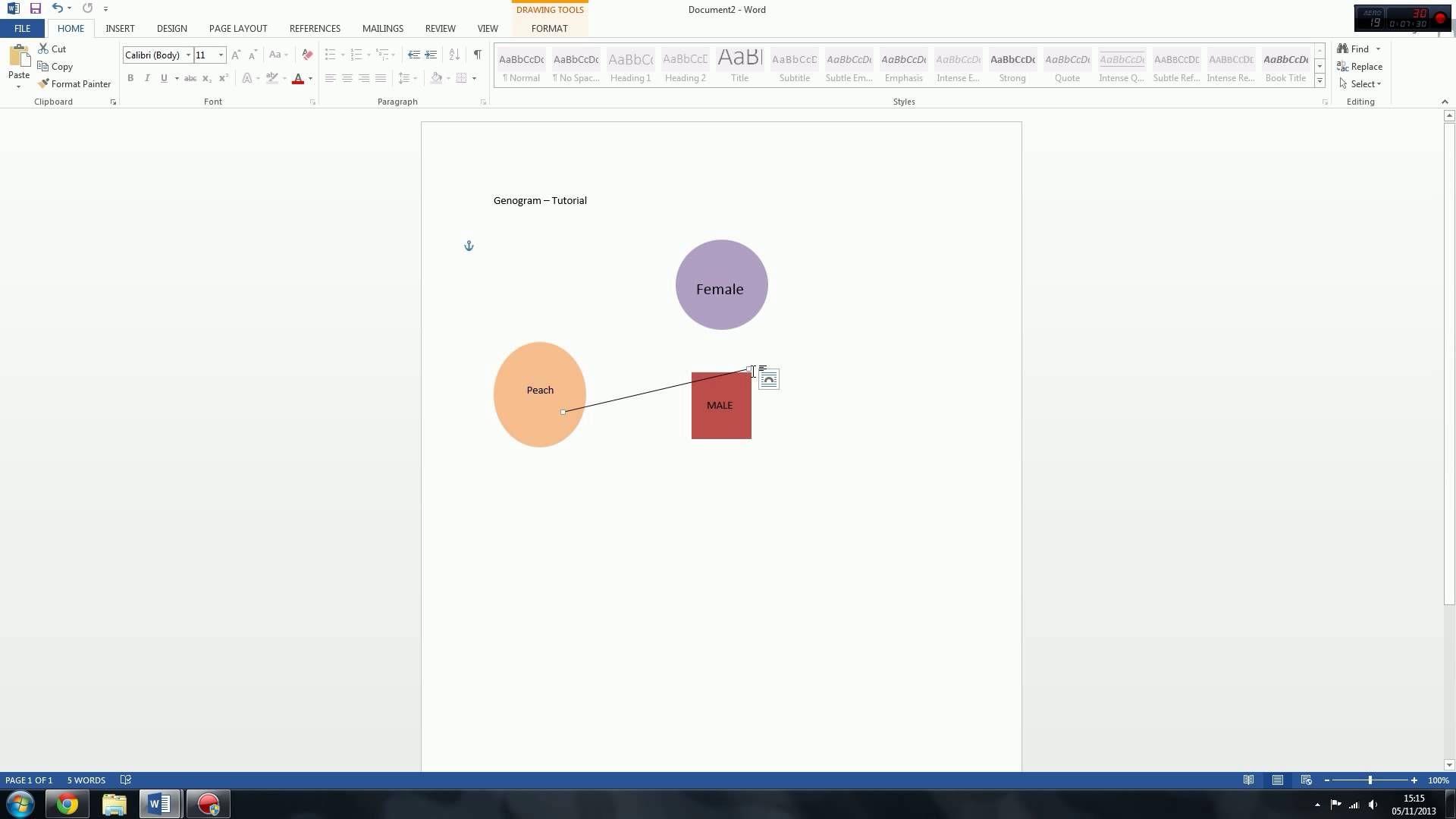 Genogram  Eco Map Tutorial  Microsoft Word  Bsn