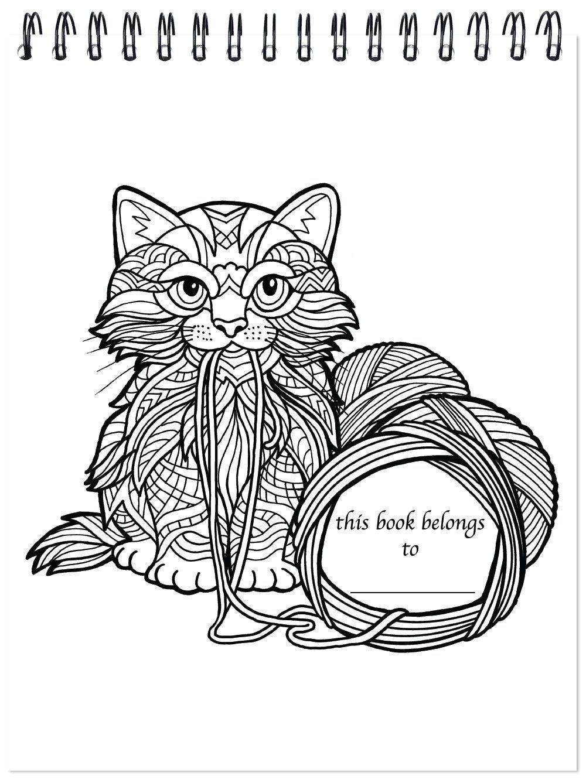 Pin de Beth Conroy en COLOR- CATS   Pinterest   Animales