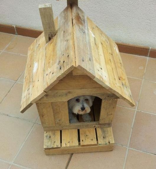 Como Hacer Casa Para Perro De Madera Facil Cada Perros