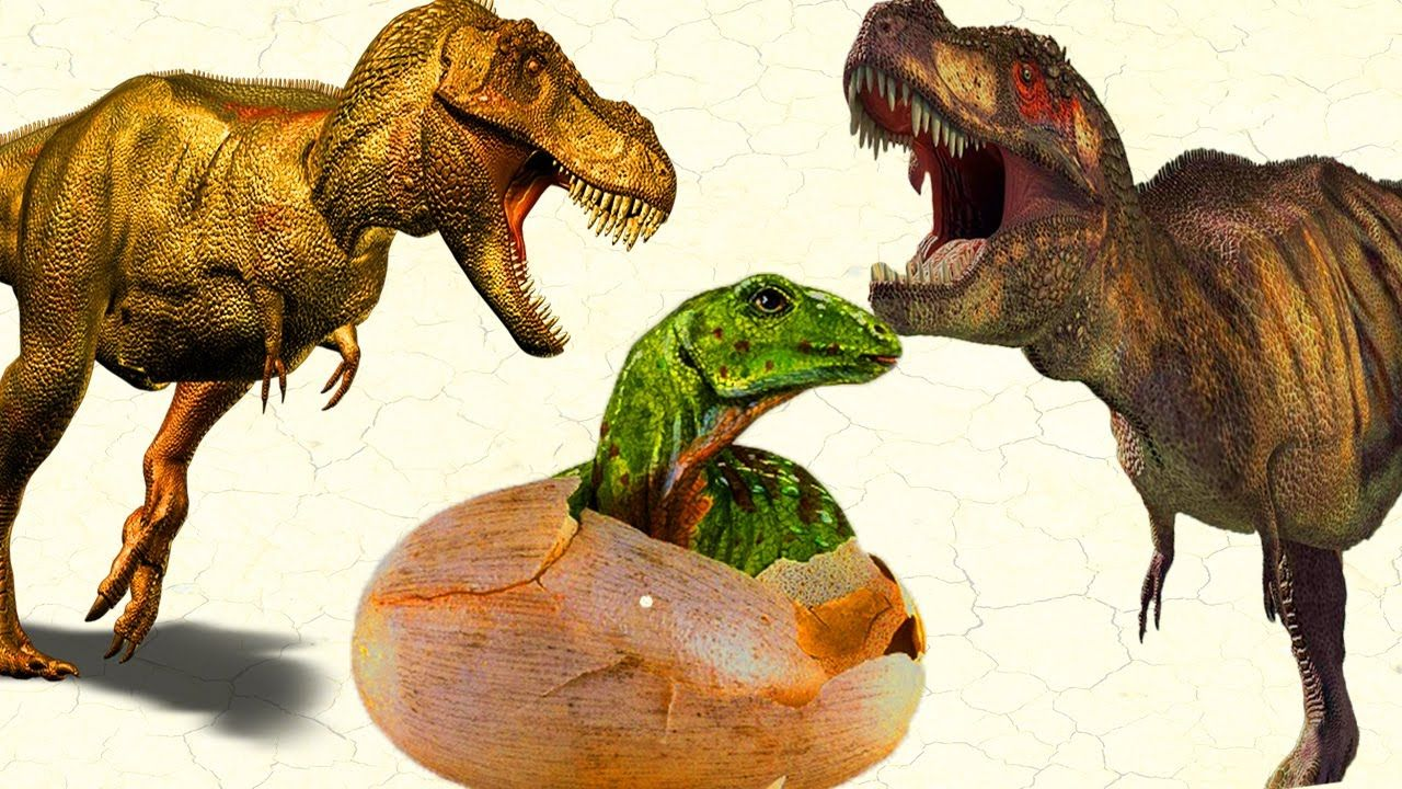 dinosaur surprise eggs dinosaurs short movie for children godzilla