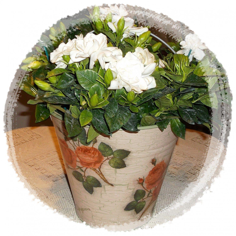 Transforming a metal bucket into a beautiful flower pot ...