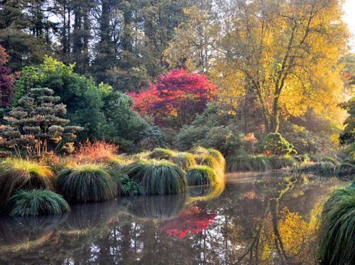 Parc Botanique De Haute Bretagne En 2019 Parc Et Jardin Parc