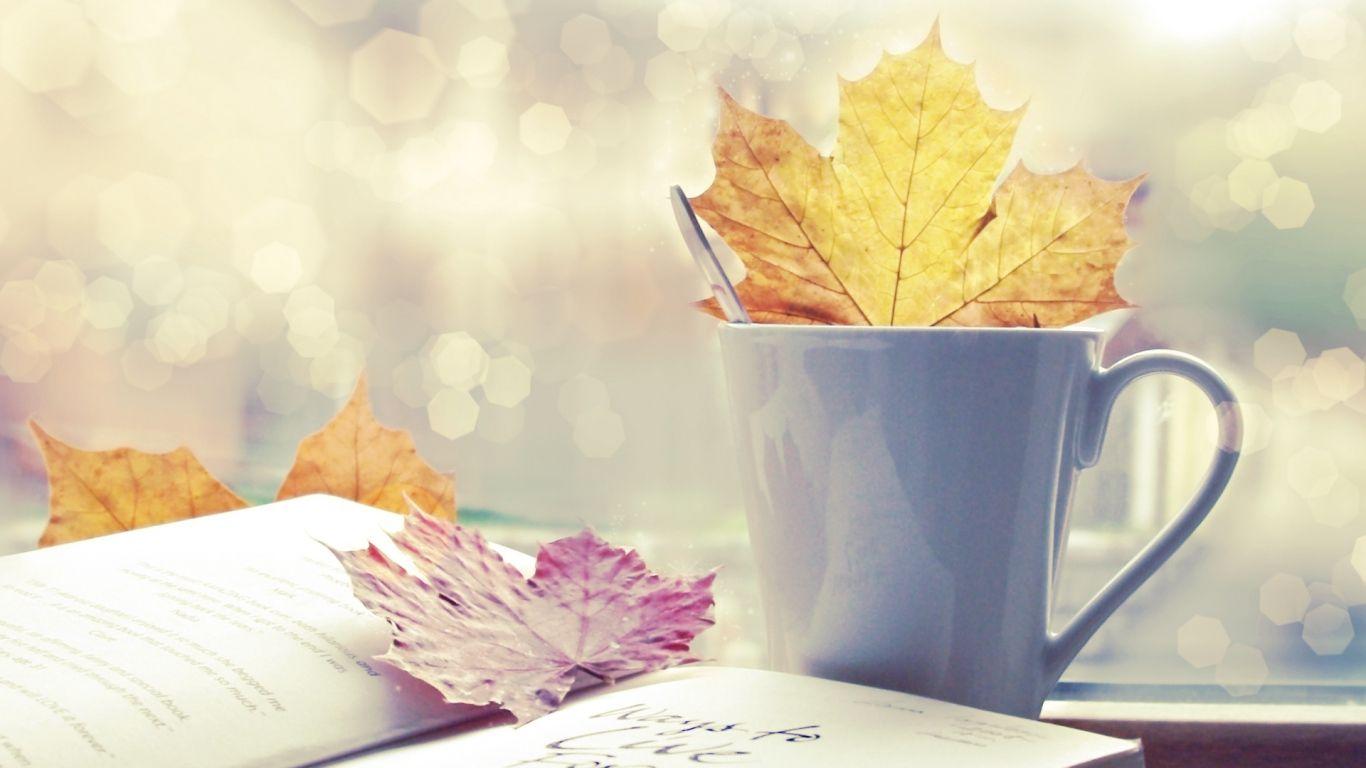 1366x768 Wallpaper Leaf Cup Book Autumn Herfstkleuren Herfst Seizoenen