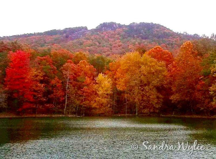 Fall colors in Virginia.