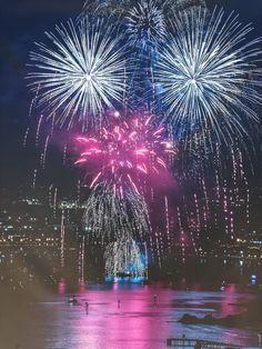 Fireworks from Point Loma, San Diego    window screens