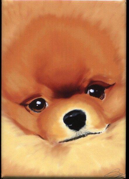 Pomeranian Cute Dog Art Magnet