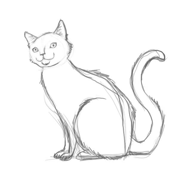 How Do You Draw A Cat With Images Warrior Cat Drawings Cat