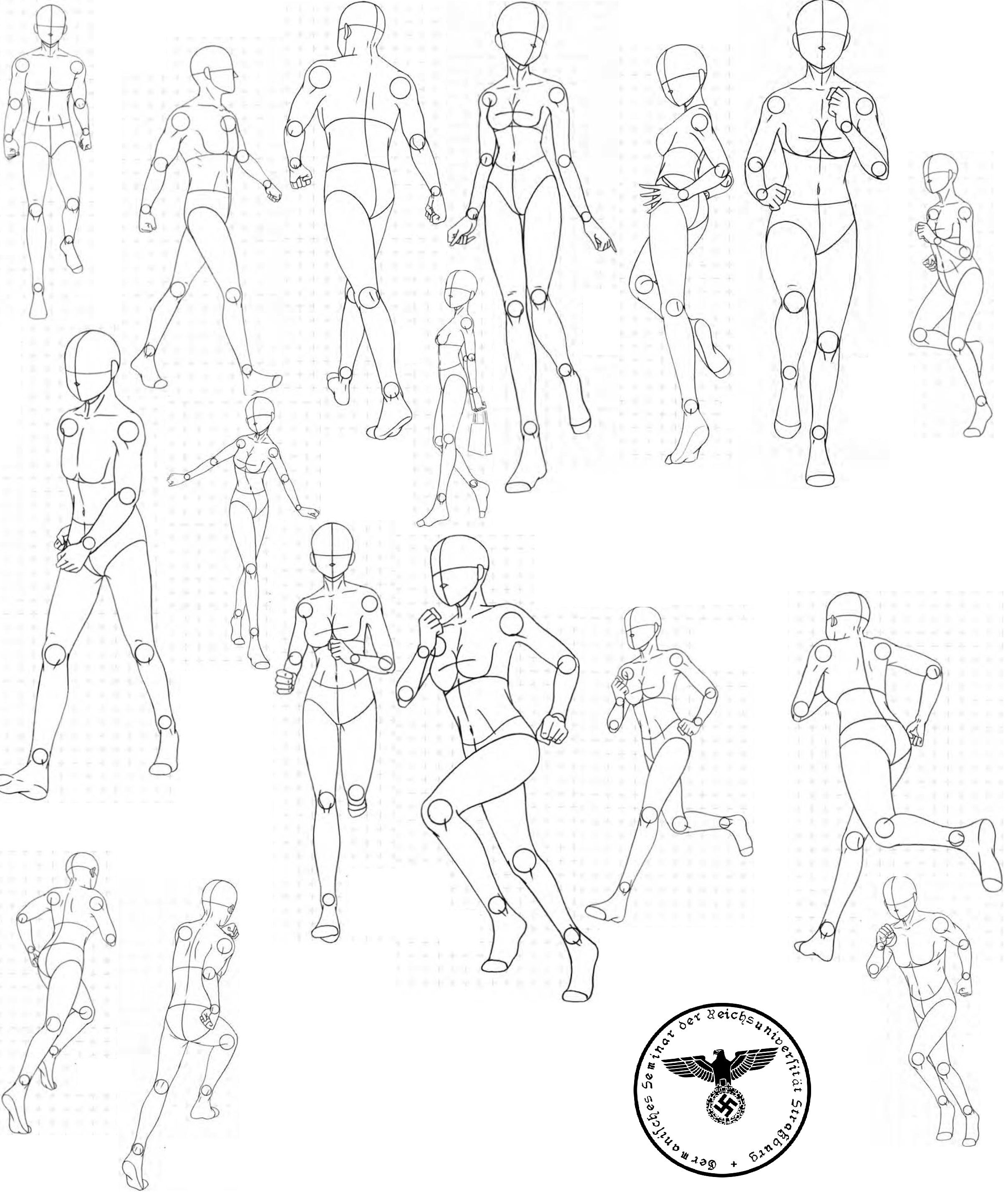 Find This Pin And More On Drawing Reference  Animation  Bodies Posed
