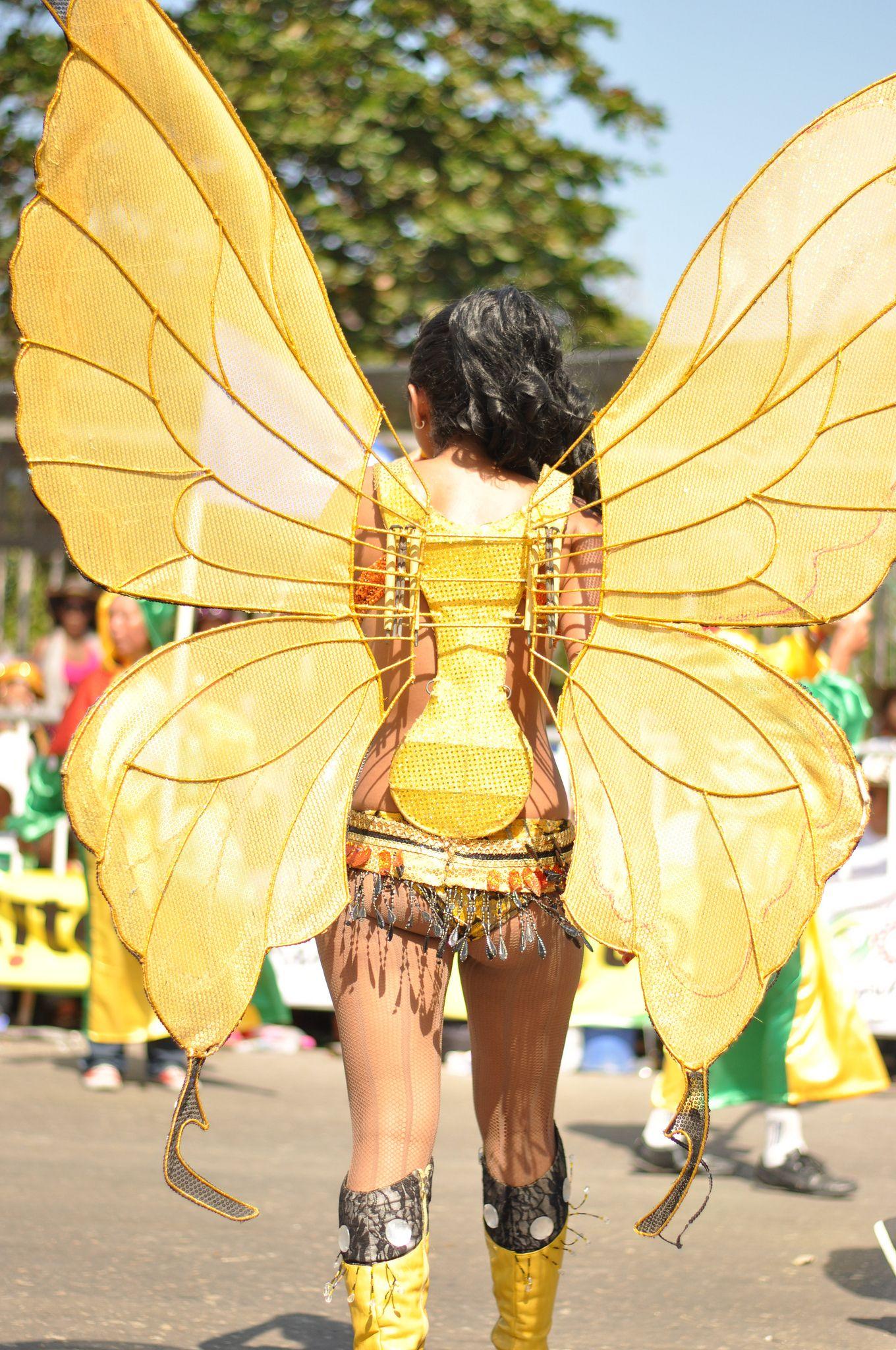 Carnaval de Barranquilla | Theatrical costumes | Costumes ... - photo#17